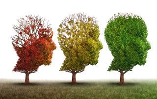 Mental Health Trees
